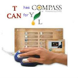 Zyto Compass Logo